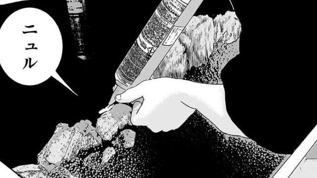 【商品】木化石と接着剤